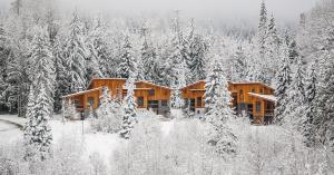 The Mountain Project #2 - Hotel - Rossland
