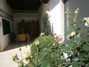 Atriumhof, Apartmány  Rust - big - 49