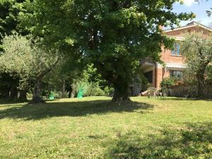Apartment In Villa Belvedere, Apartmány  Val di Pugna - big - 3