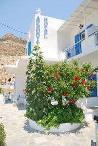 Hostels und Jugendherbergen - Afroditi Hotel