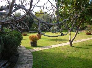Auberges de jeunesse - Villa Chiarenza Maison d\'Hotes