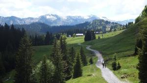 Berghof Fetz, Hotely  Schwarzenberg im Bregenzerwald - big - 15