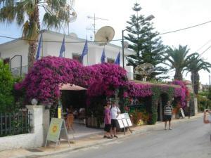 Hostels e Albergues - Harry\'s Bar & Apartments 1