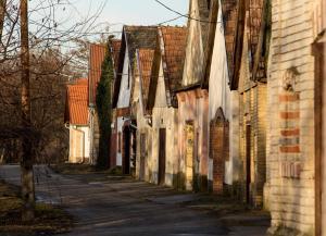Berger Pince és vendégház, Guest houses  Császártöltés - big - 18