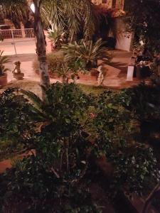 obrázek - Villa Aleida Apartments