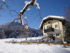 Apartments Geistlinger, Apartmanok  Flachau - big - 72