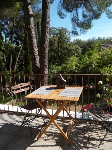 . Petit Appartement Pont du Gard