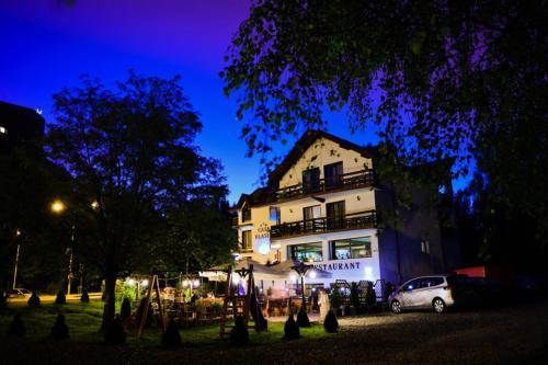 Casa Vlasin - Hotel - Poiana Brasov