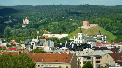 Vilnius Center Apartment - Old Town View