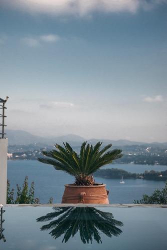 Spartylas, Ag. Markos, Greece.
