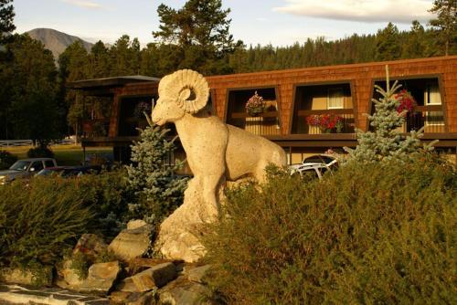 Accommodation in Jasper