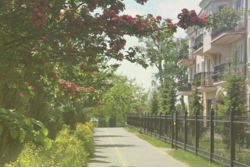 . Lake View Villa