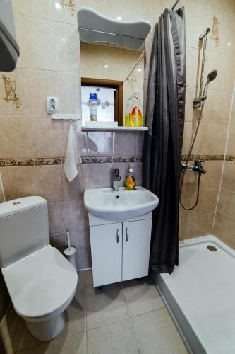 Apartment on Razina, Rzhevskiy rayon
