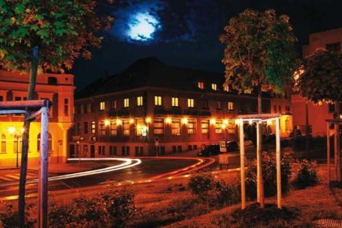 Hotel-overnachting met je hond in Hotel Zelený Strom - Hořovice