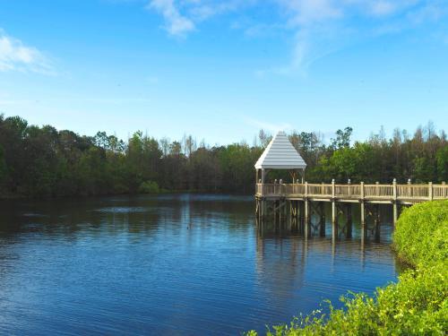 Hilton Grand Vacations at SeaWorld photo 39
