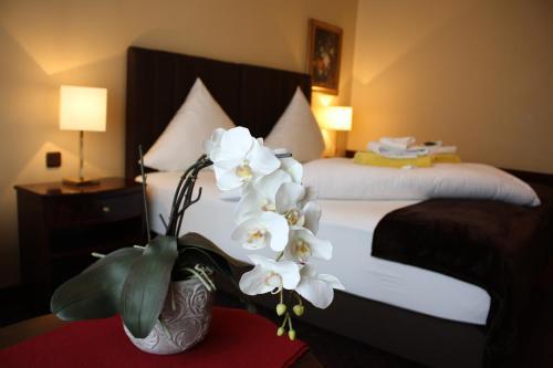 Hotel Exquisit impression