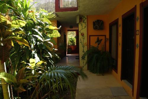 La Cabaña, Puerto Angel