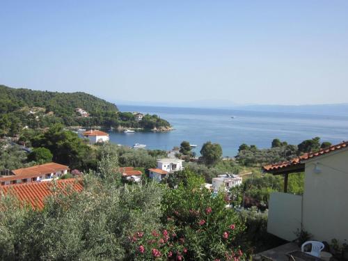 . Kolios View