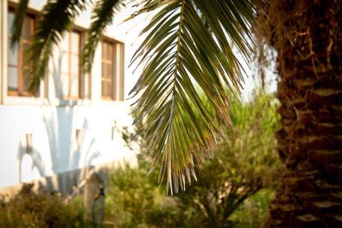 Cabeca Da Cabra Casa De Campo, 7520-409 Porto Covo