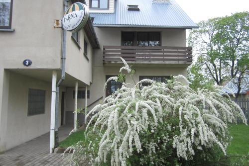 Pärna Guesthouse & Apartments