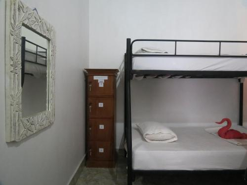 Seng i 4-sengers sovesal (begge kjønn) (Bed in 4-Bed Mixed Dormitory Room)