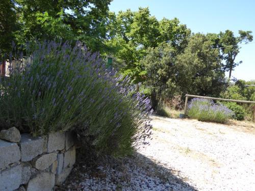 Casa Solotti bild6