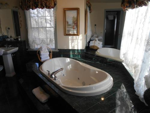 Suite Queen dengan Bathtub Spa  (Queen Suite with Spa Bath)