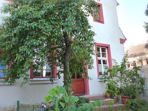 . Pension Torgau - Zimmer 8