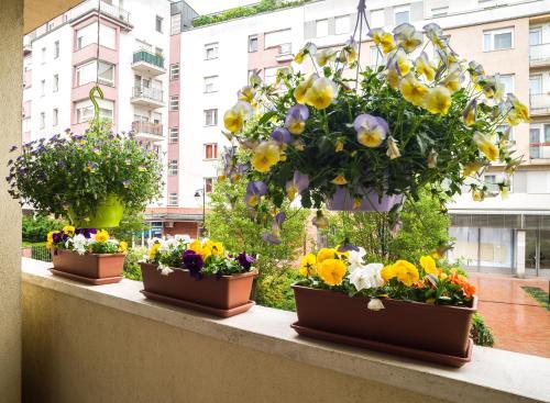 Lovely Corvin Apartment Апартаменты с балконом