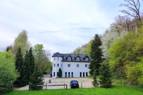 . Landgasthaus Steinsmühle