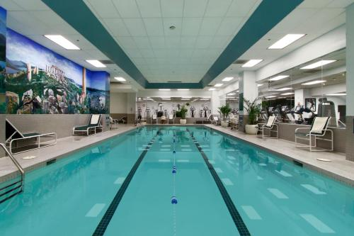 Hotels With Indoor Swimming Pools In Washington Dc Trip101