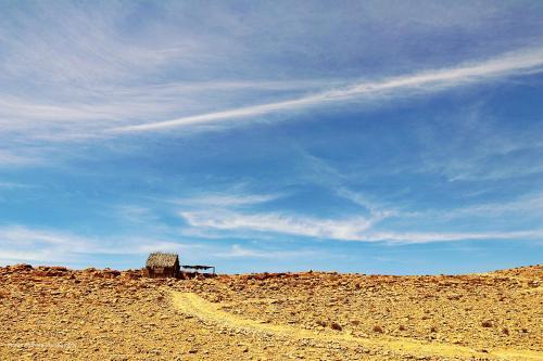 . Succah in the Desert