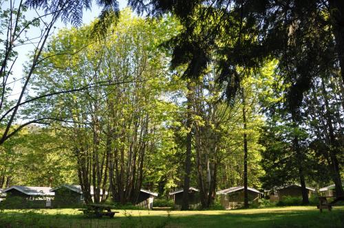 . Sunwolf Riverside Cabins