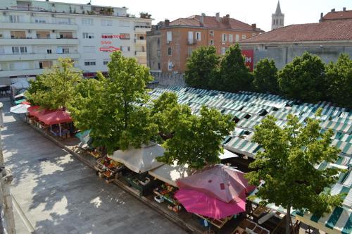 Apartments Silvia, Pension in Zadar