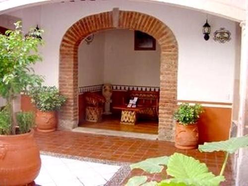 Reyna Soledad, Zacatecas
