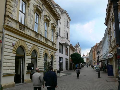 Sunny city center, 7621 Pécs