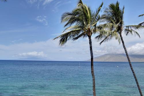 Royal Mauian 411 - Kihei, HI 96753