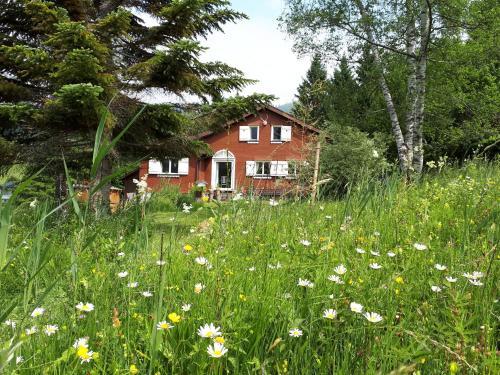 Chalet Chic - Wildhaus