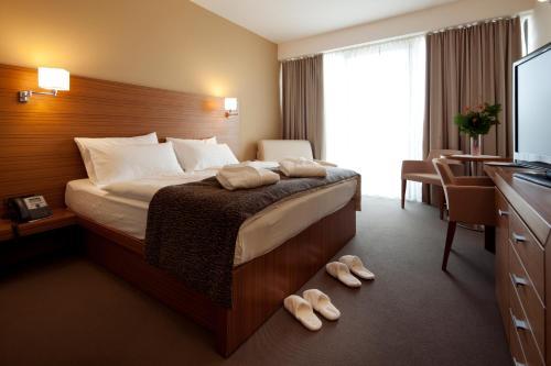 Bohinj Eco Hotel - Bohinj