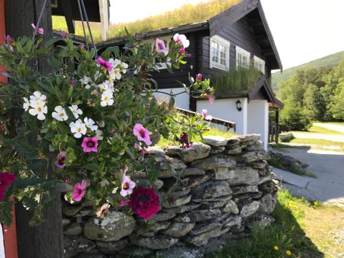 Hotel-overnachting met je hond in Granmo Camping - Oppdal