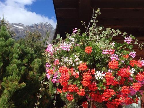 Hotel Villa Nevada a Cortina d'Ampezzo