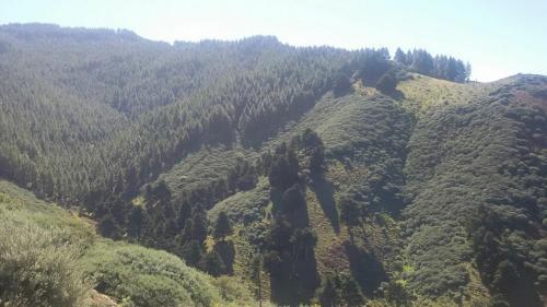 Cabañas Valle Verde 28
