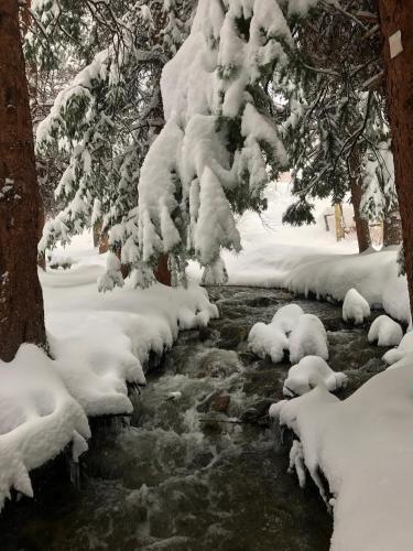 Breck Creekside At Wildwood Suites - Breckenridge, CO 80424