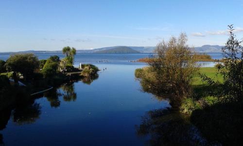 Silvereye Retreat - Accommodation - Rotorua