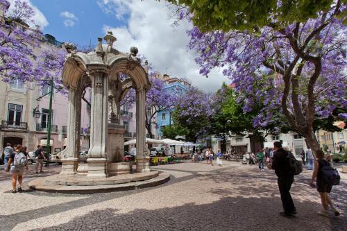 Lisboa Carmo Hotel photo 3