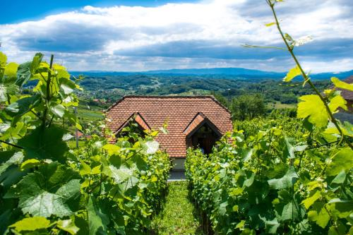 Wine Hill Rest House - Chalet - Sopot