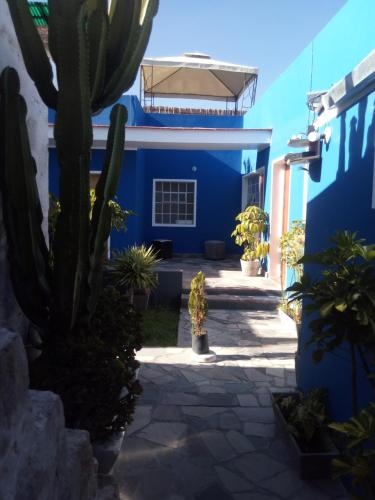 HotelBubamara San Lazaro