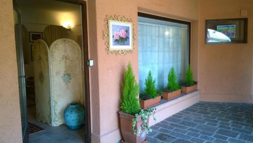 Residenza Camelia Montecampione - Apartment - Artogne