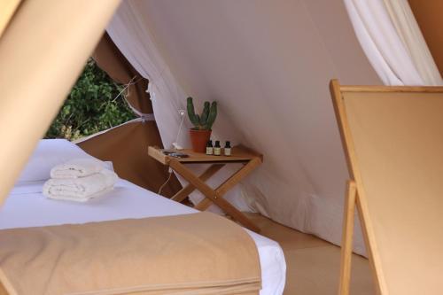Tent Hotel Fundació L'Olivar 5