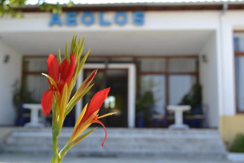 __{offers.Best_flights}__ Aeolos Hotel